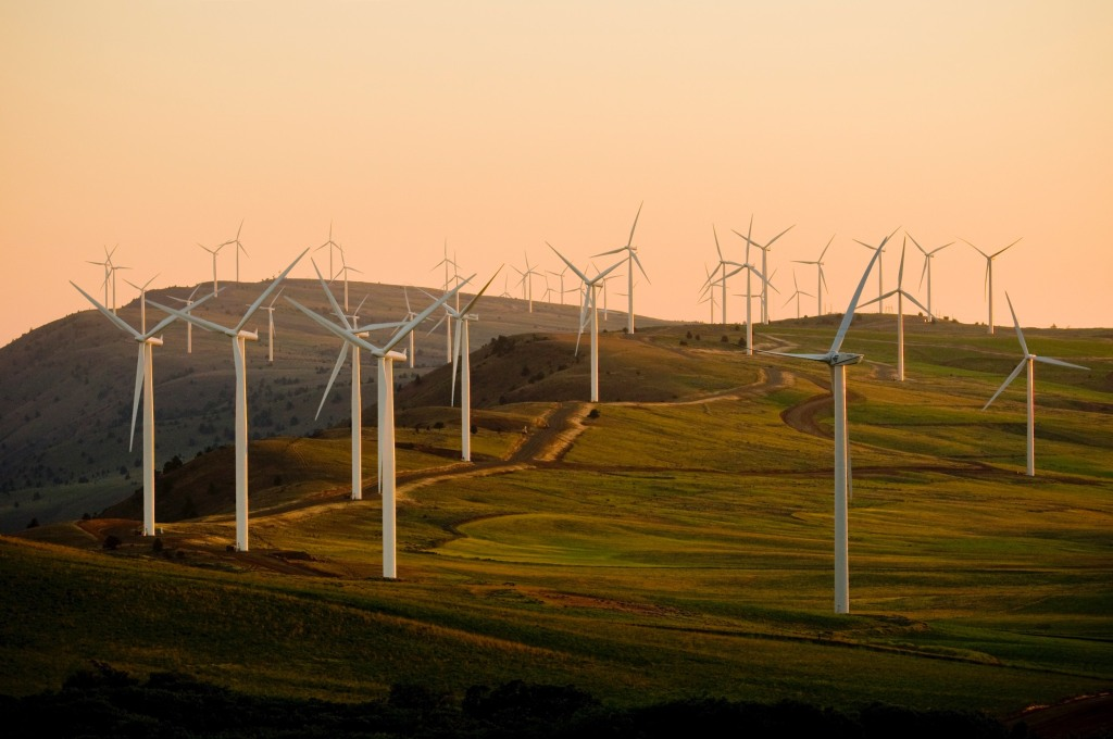 Wind turbines are part of the Green New Deal's efforts on renewable energy.